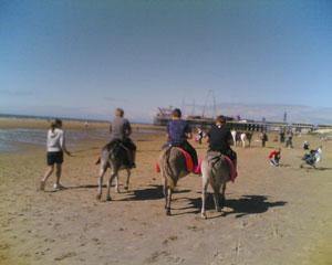 Donkey Ride On The Beach