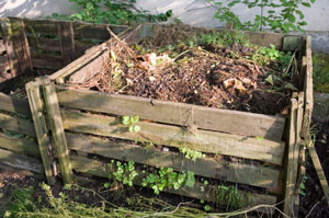 Keeping Your Compost Pile Trouble-Free