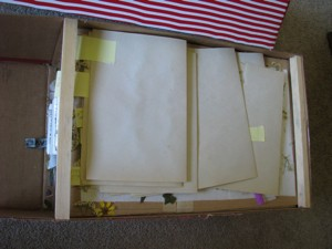 Storage Box For Pressed Flowers