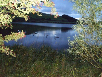Scenery: Loch Lindores (Fife, Scotland)
