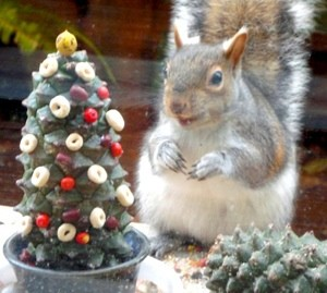 Wildlife: An Outdoor Christmas Offering
