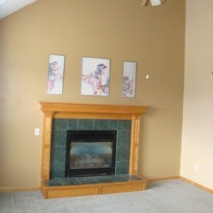 Living Room Paint Color Advice