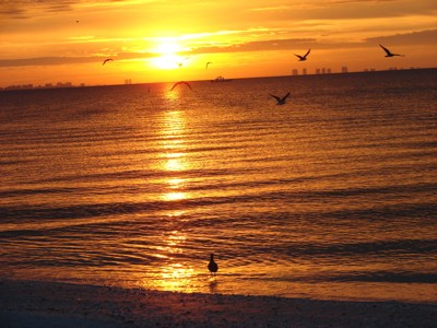 Scenery: Sunset (Sanibel Island, FL)