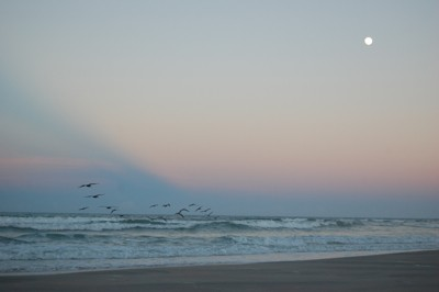 Scenery: Moonrise Over the Atlantic Ocean