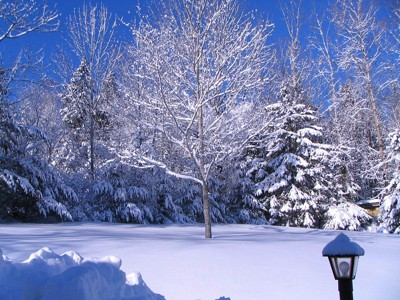 Scenery: Snow (Nova Scotia)