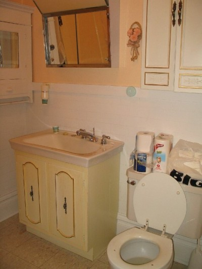 RE: Bathroom Paint Color Advice - Brown Bag Wallpaper