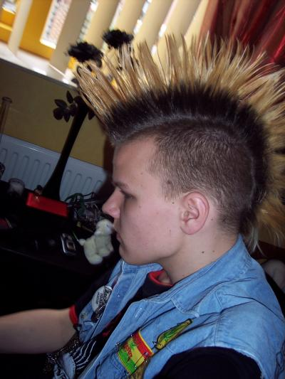RE: Using Glue to Make a Mohawk with Spikes