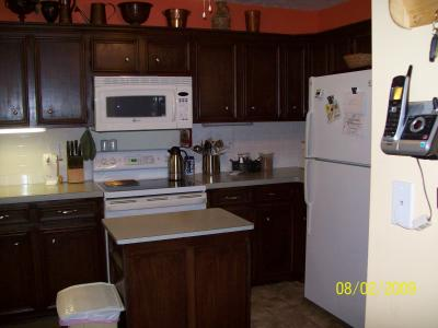 RE: Refinishing Kitchen Cabinets