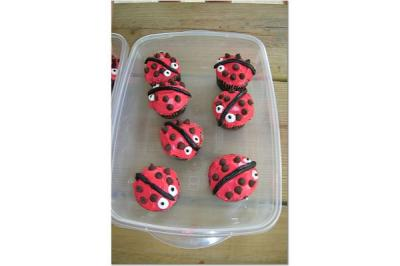 RE: Ladybug Themed Party