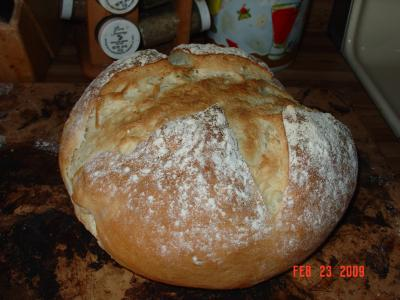 RE: Making Sourdough Bread in a Bread Machine