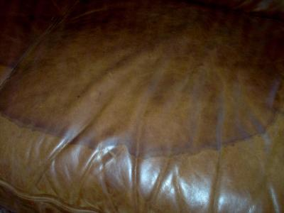 Stains On Leather Sofa Thesofa