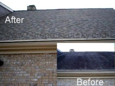 RE: Black Streaks on Roof (Mold)