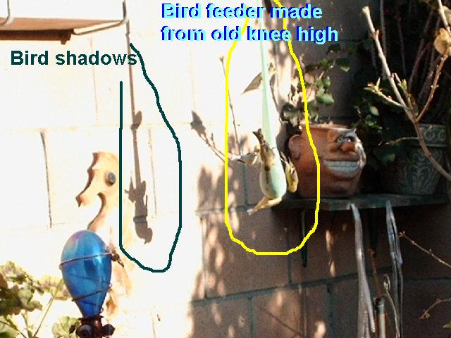 RE: Keep Birds Out of the Garden