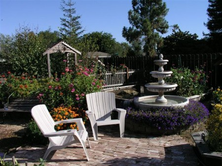 Garden Photos From Lodi, CA