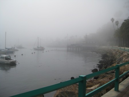 Photo of Fog Rolling