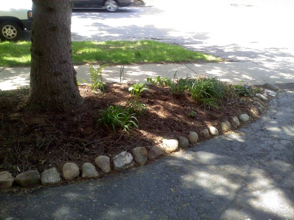 Photo of small flower bed under a tree