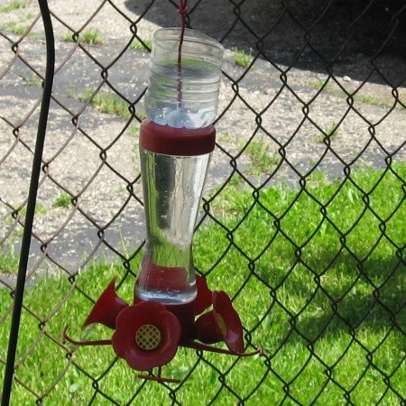 A hummingbird feeder.