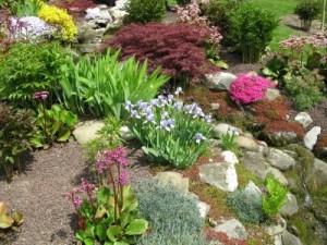 Building a Rock Garden ThriftyFun