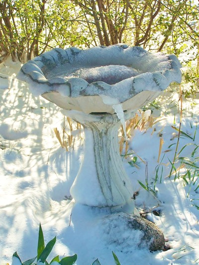 Picture of a concrete bird bath.