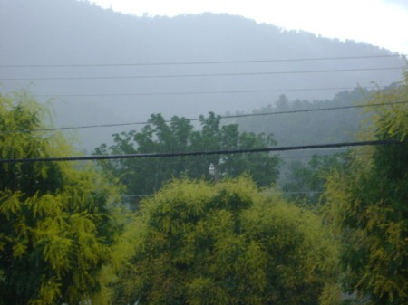 After a spring rain in Hampton, TN, with mist over the trees.