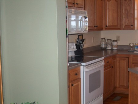 view of kitchen cabinets and adjoining wall