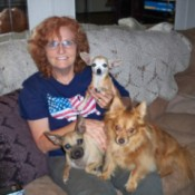 woman sitting on the floor holding three small dogs
