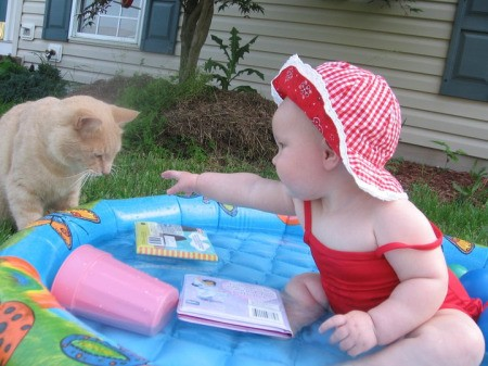 An orange cat checking out a small pool with a baby in it.
