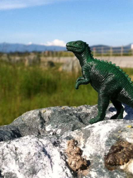 small plastic godzilla figurine standing on a rock