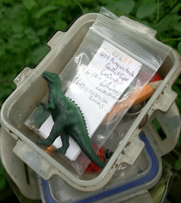 a typical medium sized cache with our signature zilla figurine included