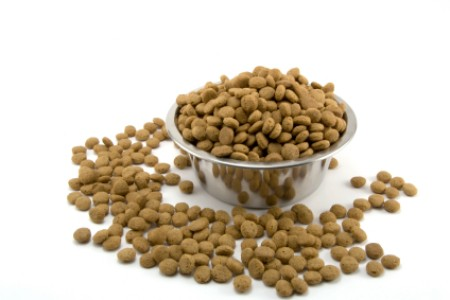 A heaping bowl of dry dog kibble.