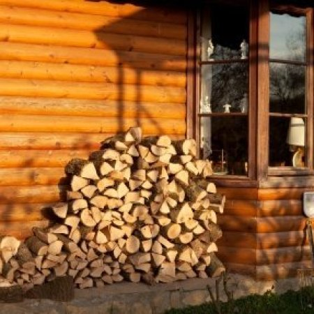Firewood stacked against the side of a house.