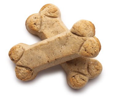 Make Your Own Dog Cookies