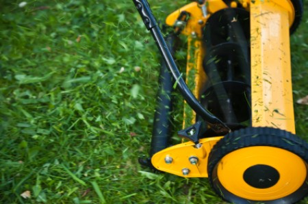 A yellow reel mower cutting grass.