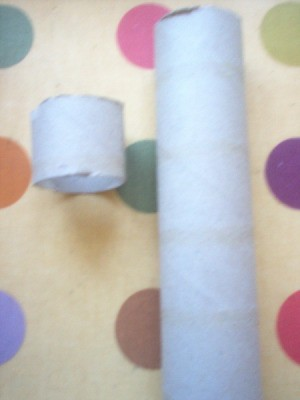Paper Towel Tube cut into sections