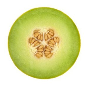 Crosssection of a Honeydew