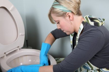 Photo of a woman cleaning a toilet.