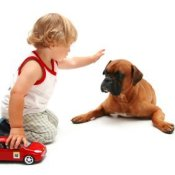 Young child kneeling on floor reaching out to a dog lying nearby.