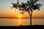 Sunset at Lake Texoma with Tree in Foreground