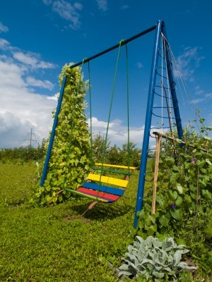 Garden swing with wire woven between side bars and vine growing up the side