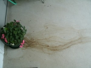 Rust water spots on concrete thriftyfun for Removing dirt stains from concrete