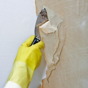 Removing Wallpaper That Has Been Painted, Gloved hand scraping off wallpaper.