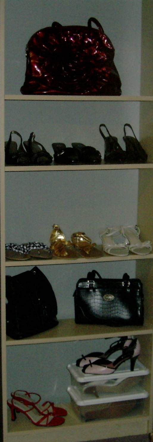 Shoes and handbags stored on bookshelf.