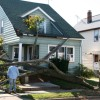 Tree Fallen on House After Hurricane