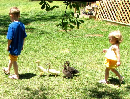 Boy and Girls Parading With Ducks