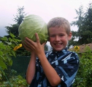 A picture of a boy holding a large head of cabbage.