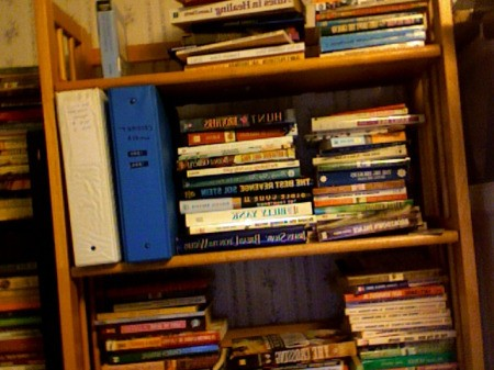 Books sorted on bookshelves.