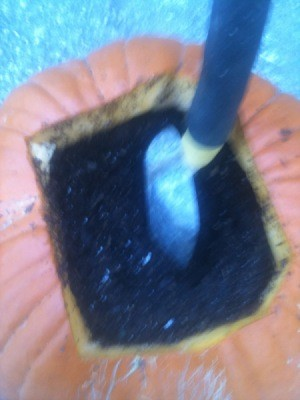 Pumpkin planter filled with soil