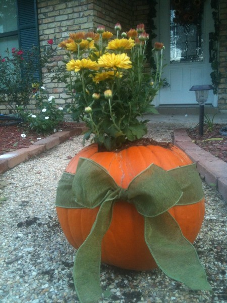 Pumpkin Planter 1