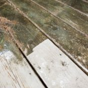 Cleaning up Mildew From Wood