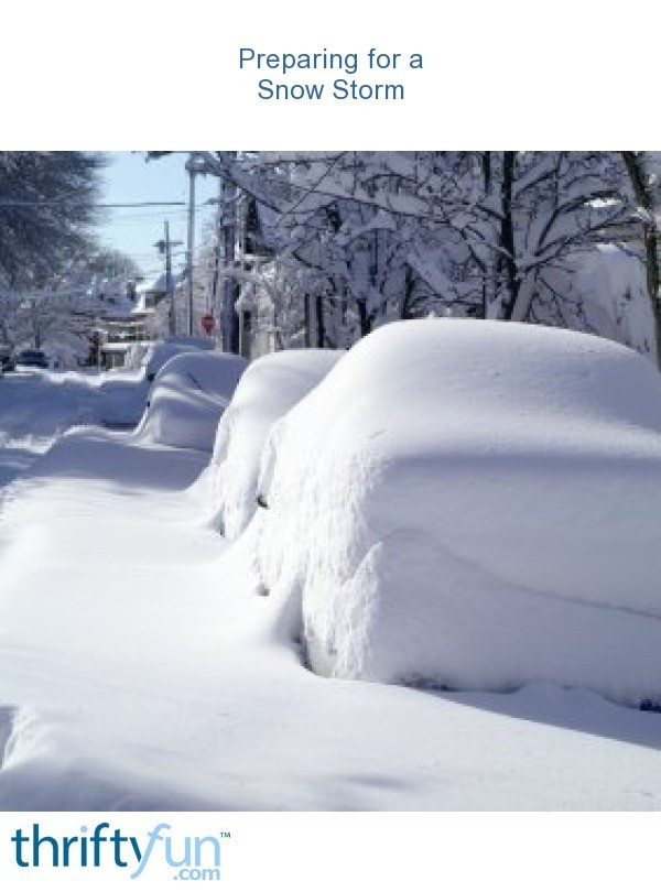 Snow Storm Funny